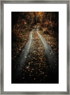 The Road Framed Print by Jakub Sisak