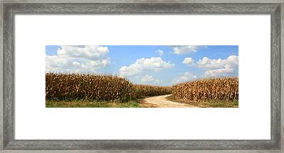 Framed Print featuring the photograph The Road Less Traveled by David Dunham