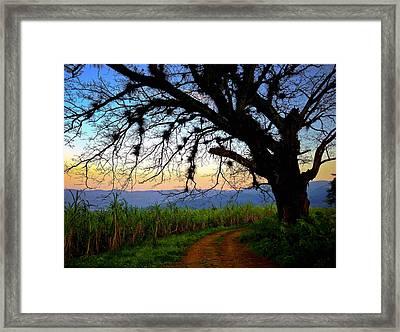The Road Less Traveled Framed Print by Skip Hunt