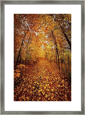 The Road Never Traveled Framed Print by Phil Koch