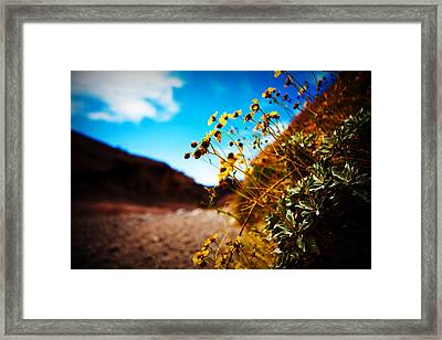 Framed Print featuring the photograph The Road To Awe by Ryan Smith
