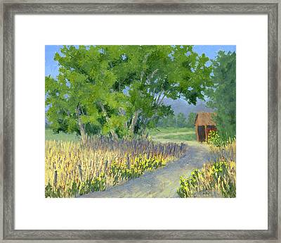 The Road To The Back Field Framed Print by David King