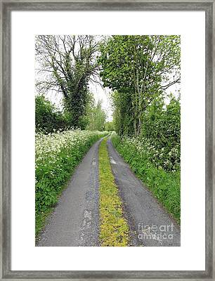The Road To The Wood Framed Print by Ethna Gillespie