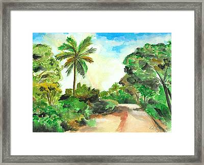 The Road To Tiwi Framed Print