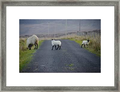 The Roads In Ireland Framed Print by Bill Cannon