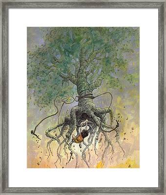 The Roaming Oak Framed Print