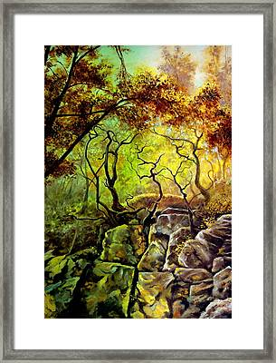 The Rocks In Starachowice Framed Print by Henryk Gorecki