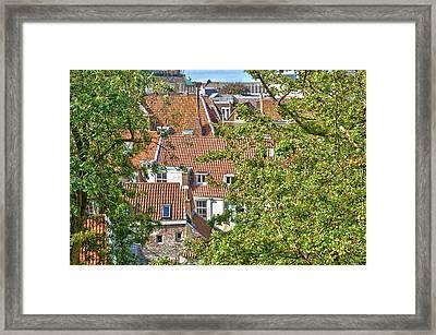The Rooftops Of Leiden Framed Print