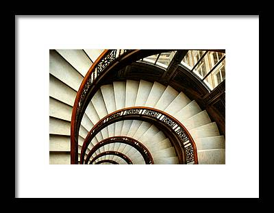 The Rookery Framed Prints