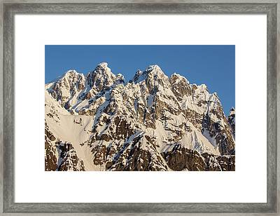 The Rooster Comb Framed Print by Tim Grams