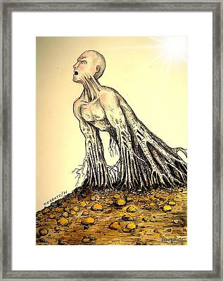 The Roots Are Deep Framed Print by Paulo Zerbato