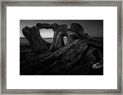 The Roots Of The Sleeping Giant Bw Framed Print