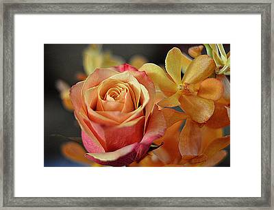 Framed Print featuring the photograph The Rose And The Orchid by Diana Mary Sharpton
