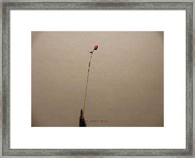 Framed Print featuring the sculpture The Rose Bud by Phillip H George