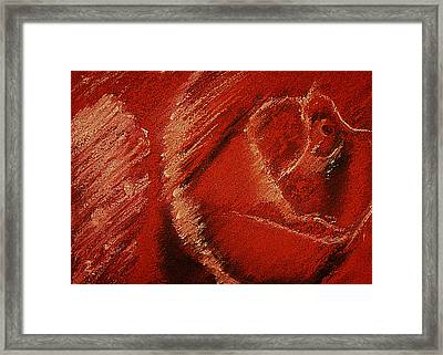 The Rose Framed Print by David Patterson