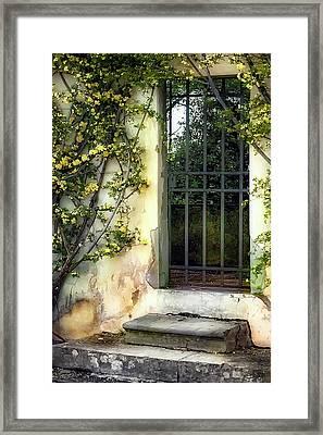 The Rose Vined Door Framed Print by Lynn Andrews