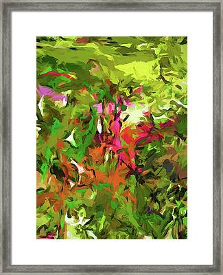 The Rosebud Framed Print
