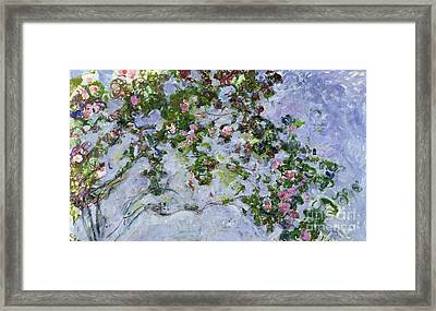 The Roses Framed Print by Claude Monet