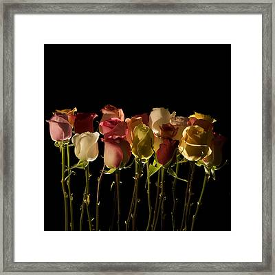 The Rose's Forest Framed Print