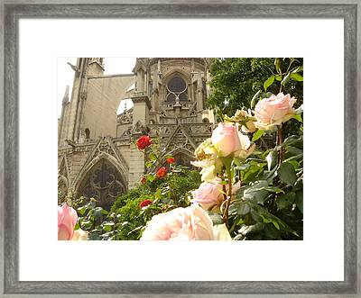 The Roses Of Notre Dame Framed Print by John Julio