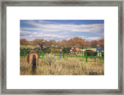 The Round Up Framed Print by Janice Rae Pariza