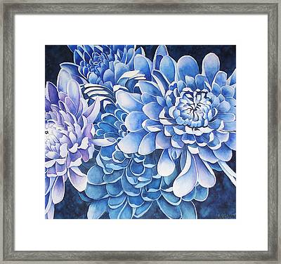 The Royals Framed Print by Yvonne Scott