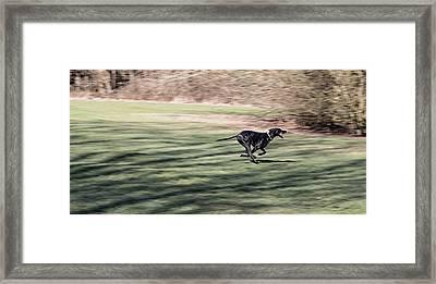 The Run Framed Print