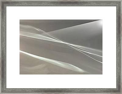 A Rush Of Wings Framed Print