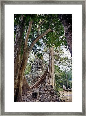 The S Gate Framed Print by Arik S Mintorogo