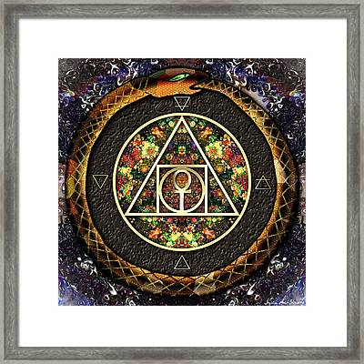 The Sacred Alchemy Of Life Framed Print