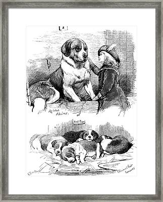 The Saint Bernard Club Dog Show Framed Print