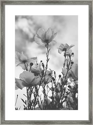 The Same Air You Breathe Framed Print
