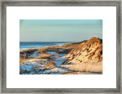 The Sand Dunes Of St Joe State Park Framed Print by JC Findley