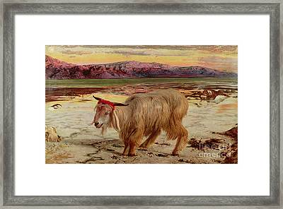 The Scapegoat Framed Print by William Holman Hunt