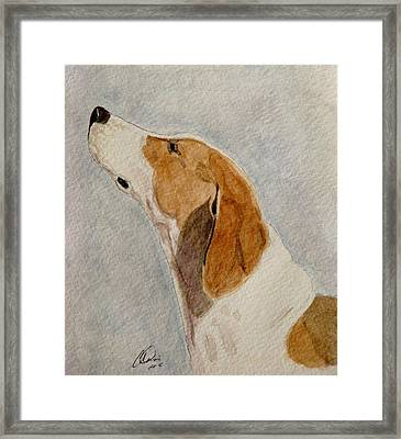 The Scent Framed Print by Angela Davies