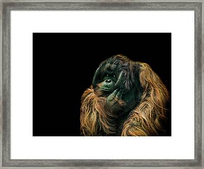 The Sceptic Framed Print