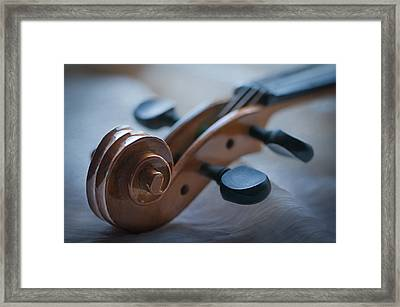 The Scroll  Framed Print by Maggie Terlecki
