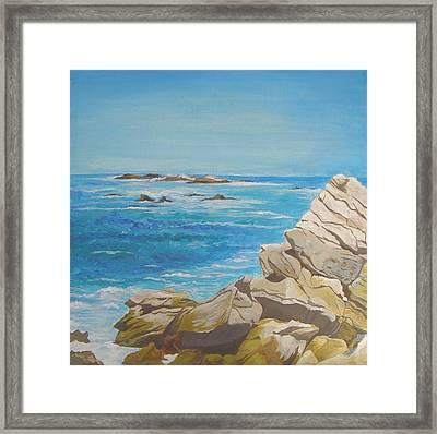 The Sea Framed Print by Leslie Gustafson