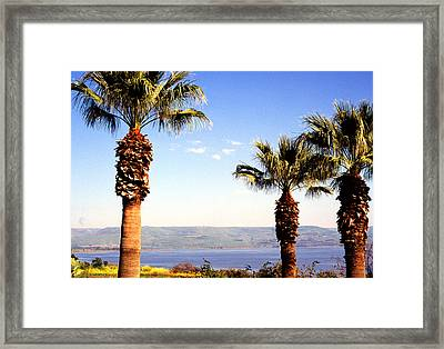 The Sea Of Galilee From The Mount Of The Beatitudes Framed Print by Thomas R Fletcher