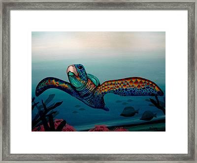 The Sea Turtle Framed Print by Alan Zinn