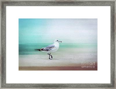 The Seagull Strut Framed Print