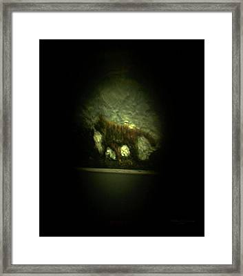 The Searching Tiger Framed Print by Phillip H George