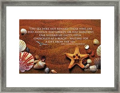 The Sea's Reward 2016 Framed Print
