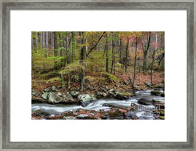 The Season Flows Along Framed Print by Michael Eingle