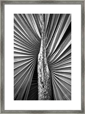 The Second Half Framed Print