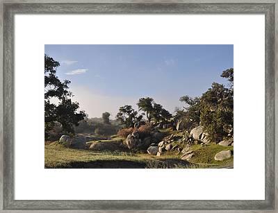 The Secret Place Framed Print
