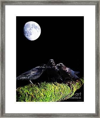 The Secret Society . Ravens Of The Night Under The Moon Framed Print by Wingsdomain Art and Photography