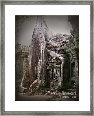 The Secrets Of Angkor Framed Print by Eena Bo