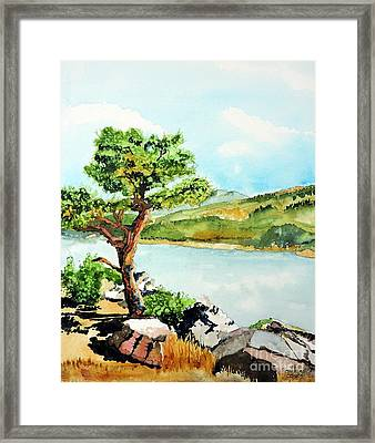 The Sentinel Framed Print by Tom Riggs