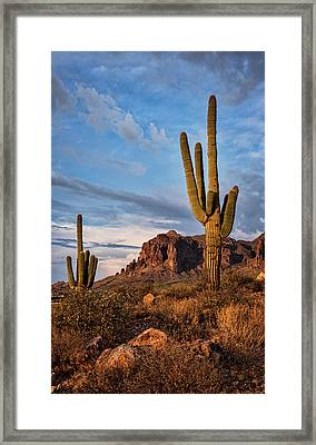 Framed Print featuring the photograph The Sentinels Of The Supes In Color  by Saija Lehtonen